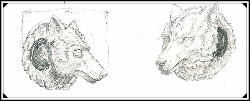 Будущий прототип шарма волка